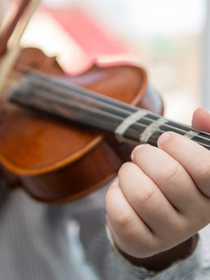 The Highs and Lows of String Instruments